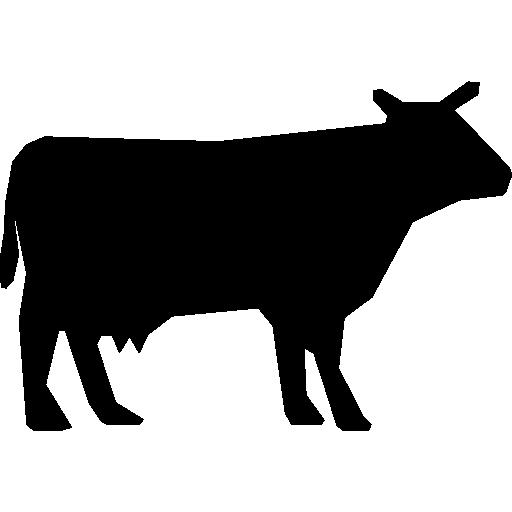 Le Paradis des Viandes | Mouton et agneau